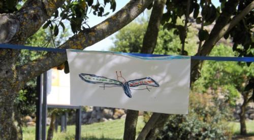 Laboratori didattico educativi al Nuraghe Losa, Abbasanta, Oristano, Sardegna